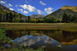 Randy Gibson | Lockett Meadow
