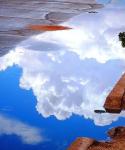 Tammy Simpkins | Sierra Vista