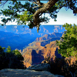 Beth Winfrey | Grand Canyon