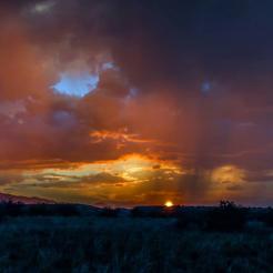 Brian Oakley Photography | Prescott