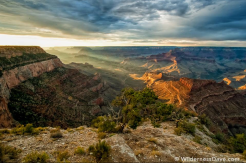 David Creech | Grand Canyon