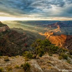 David Creech | Grand Canyon