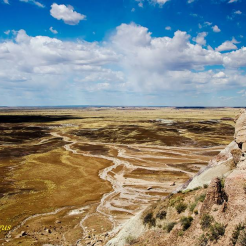 Jag Fergus | Painted Desert