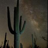 Kristy Snyder | Tucson
