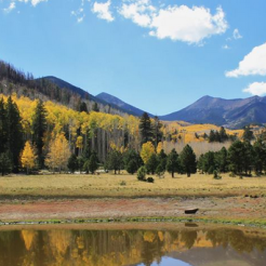 Larry Wright Sr. | Lockett Meadow Basin