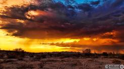 Ryan Seek | Maricopa