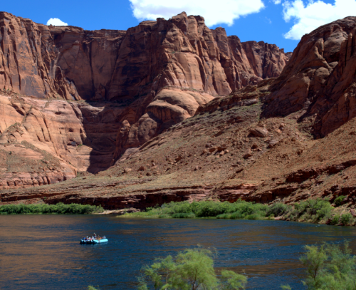 Photo courtesy of Colorado River Discovery.