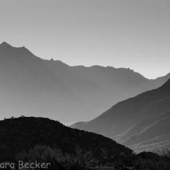 Tamara Gray Becker | South Mountain