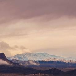Tamara Pruessner | Tucson