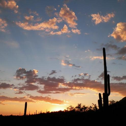 Wendy Dunham   Tucson