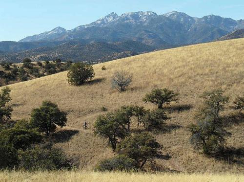 Gill Couto | Arizona Trail
