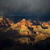 Peter James Nature Photography