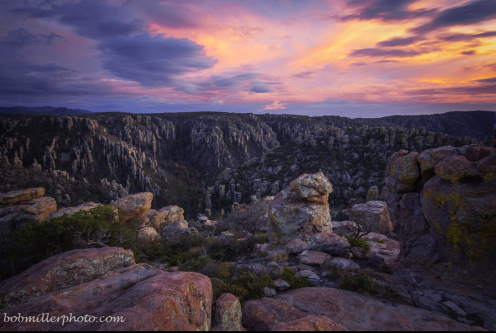 Bob Miller   Chiricahua National Monument