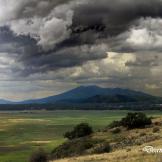 Deanna Bailey | Mormon Lake