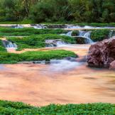 Jeff Maltzman | Havasu Creek