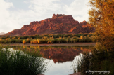 Jennifer Root Litwiller | Lower Salt River