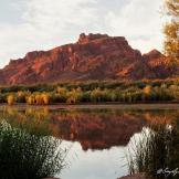 Jennifer Root Litwiller | Lower Salt River