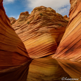 Lawrence Busch | Coyote Buttes North