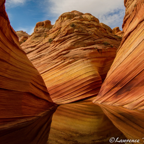 Lawrence Busch   Coyote Buttes North