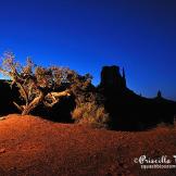 Perci Grass Tacheney | Monument Valley