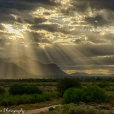 Photography by Saija | The Superstitions