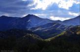 Andrea Busby Denogean | Mt. Lemmon