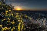 Andrew Kopolow | Piestewa Peak
