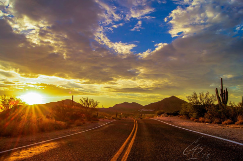 Casey Stanford | Usery Mountain Regional Park