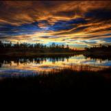 Ed Mullins | Fool Hollow Lake