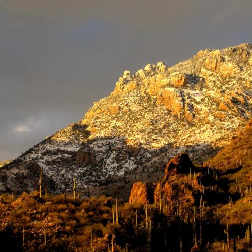 George Tausiani   Catalina Mountains