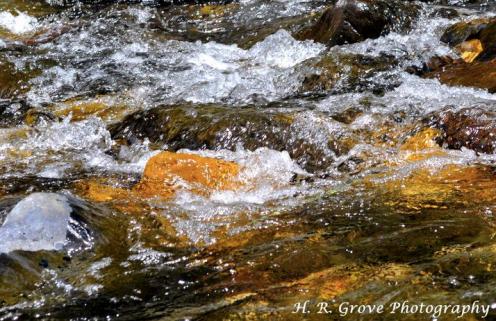 Helen Aguiniga-Grove   Oak Creek