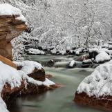 Jeff Maltzman | Oak Creek Canyon