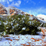 John Morey Photography | Natural Fine Art Photographics & More | Sierra Ancha