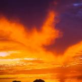 Norm Cooper | San Tan Mountains