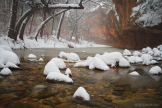 Peter James Nature Photography | Oak Creek Canyon