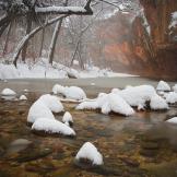 Peter James Nature Photography | Oak Creek Canyon