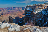 Bob Martinson | Grand Canyon