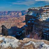 Bob Martinson | Grand Canyon