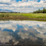 Focus On Nature Photography | Marshall Lake