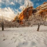 Jabon Eagar Photography | West Fork of Oak Creek