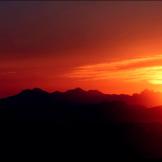 Karrie Lynn Altland | Tucson