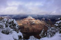 Ramon Salazar   Grand Canyon