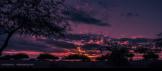Scott Ingersoll | East Mesa