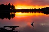 Steve Bohata | Kaibab Lake