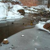 Tam Ryan | West Fork of Oak Creek