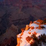 Thomas Barnwell | Grand Canyon