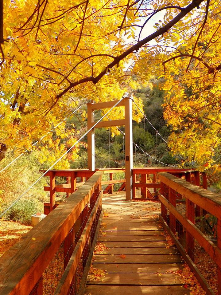 Boyce Thompson Arboretum State Park U.S