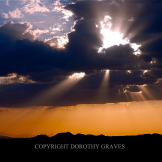Dorothy Graves   Lost Dutchman State Park