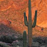 Doug Koepsel | Superstition Mountains
