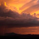 Edward Doran   Near Tucson